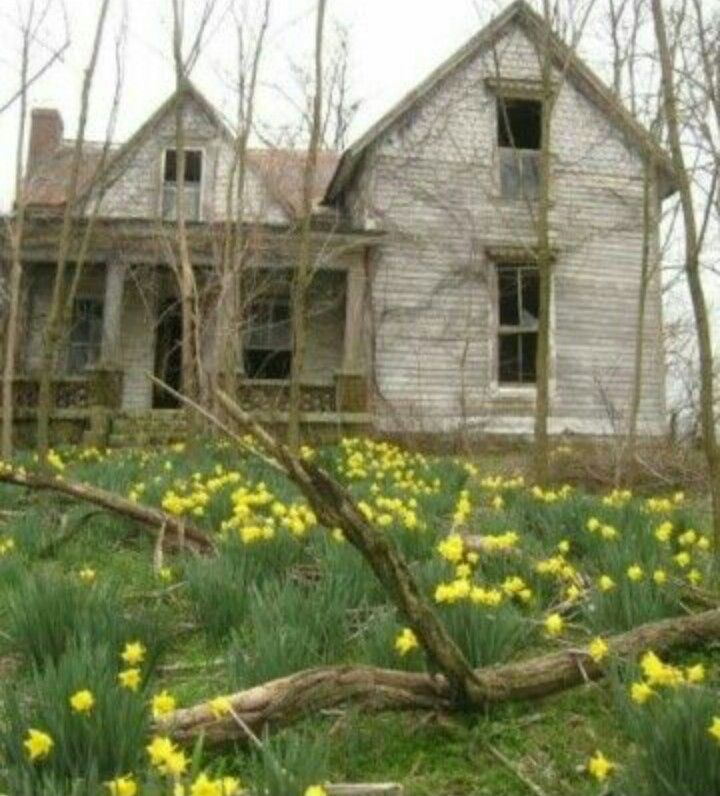 2173 Best Forgotten Homes Images On Pinterest Abandoned