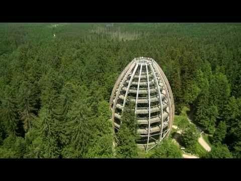 #Baumwipfelpfad BAYERISCHER WALD in Neuschönau im Nationalpark