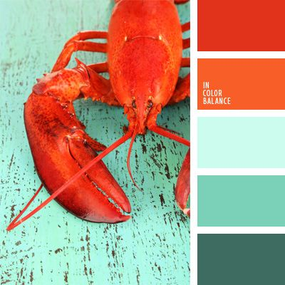 The color palette number 59 turquoise, turquoise and coral, turquoise and red, contrasting colors, coral, orange, palette for a designer, color of boiled lobster,