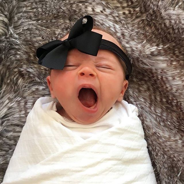 Yawnnnnn... How adorable is this tiny little styler!? Only 4 weeks old and…