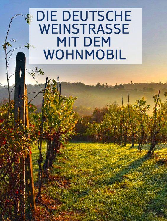 Die in der Pfalz gelegene Deutsche #Weinstraße hat landschaftlich viel zu bieten. Lesen Sie hier, warum die Region prädestiniert für eine #Wohnmobil-Tour ist! #wohnmobil #camperurlaub #camping #genießer #weinroute