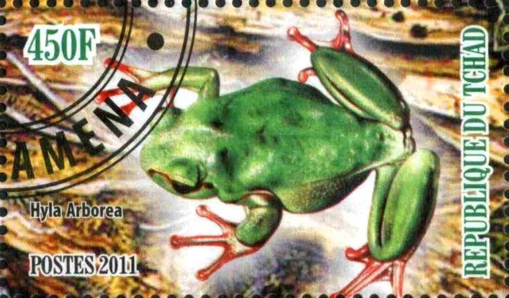 Stamp: Hyla Arborea (Cinderellas) (Chad) Col:TD 2011-05/4