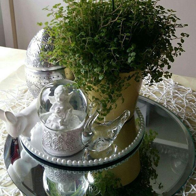 KOTI&SISUSTUS. Keittiö pöydän Kevät Asetelma, minun tyyliä. Tykkään&Nautin yksityskohdista, trendeistä jne. Nähdään...HYMY #blogi #koti #sisustus #keittiö #asetelma #kevät #yksityiskohdat #viherkasvit #sisustustavarat ☺