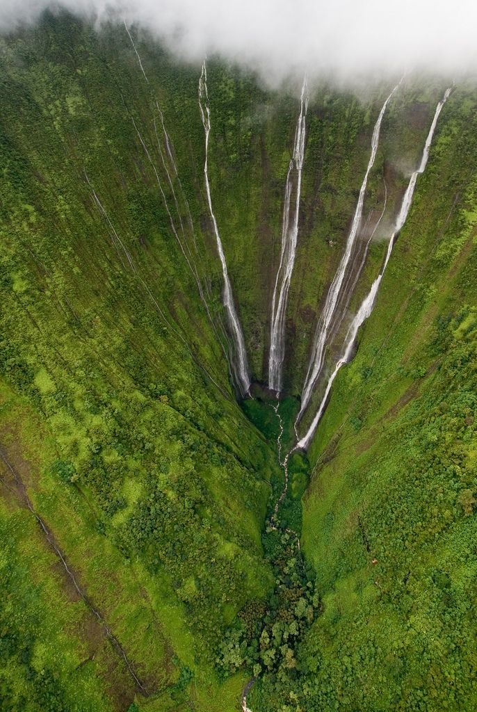 Hi'ilawe Falls is on the North Hamakua coast of the Big Island of Hawaii.   The waterfall drops about 1,450 feet, with a main drop of 1,201 feet, into Waipio Valley on Lalakea Stream.  #America #myt