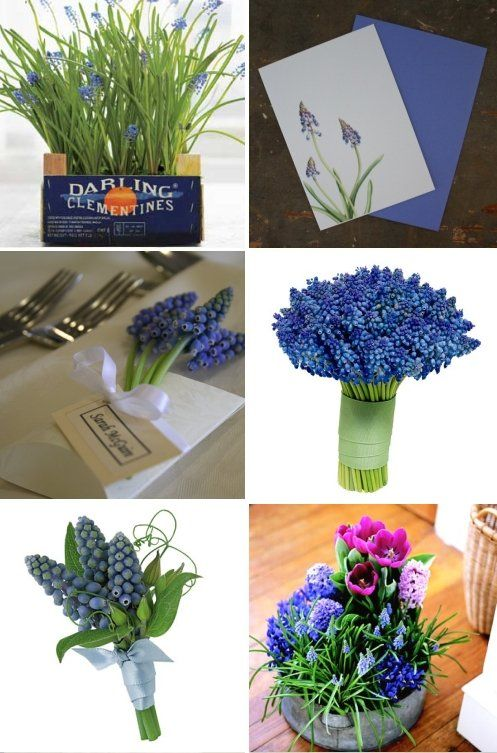 grape-hyacinth-wedding-bouquet-centerpieces