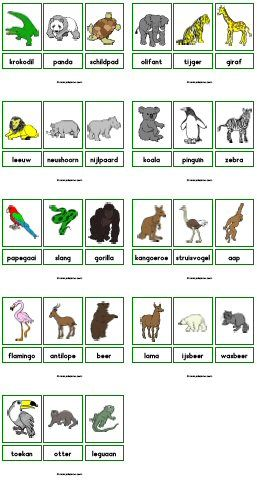 * Dierentuin: verschillende activiteiten zijn mogelijk met de woordkaarten.