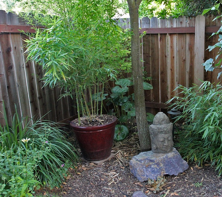 Asian Inspired Woodland Garden. Landscaping IdeasBackyard ... Amazing Ideas
