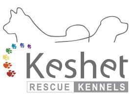 Keshet Kennels/Rescue | Keshet Kennels is a loving, safe, spacious, full-service dog boarding & daycare facility, that is open to all breeds. Along with facilities rental, training and a large breed rescue, Keshet is a resort for dogs; one that will provide owners with peace of mind.
