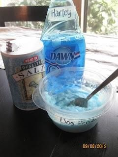 DIY flea killer for pets: mix half a container of iodized salt  a few squirts of the blue Dawn dish soap to get the consistency of a good salt scrub. don't want it too runny or dry. Scrub pets, rinse, careful not to get in eyes. Dawn is the source of killing fleas. Massaging salt in the skin helps to kill flea eggs that were laid.