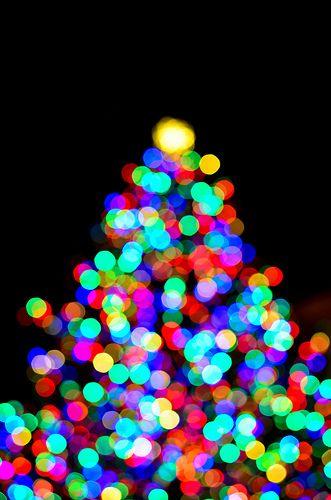 O 'Bokeh' Christmas Tree  ♥  Pioneer Courthouse Square Christmas Tree Lighting ♥ Portland, Oregon PDX