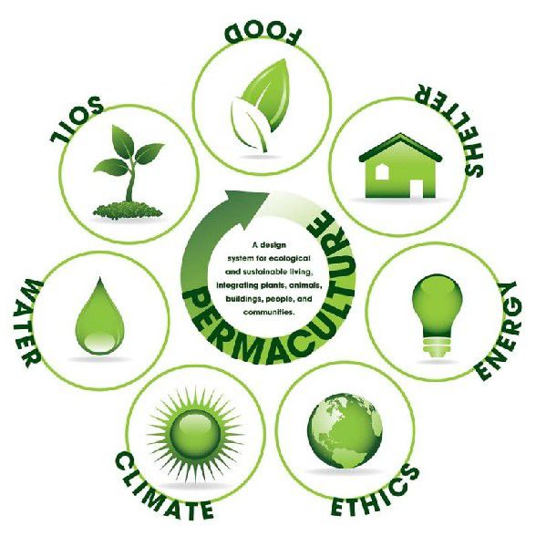 Permaculture cycle