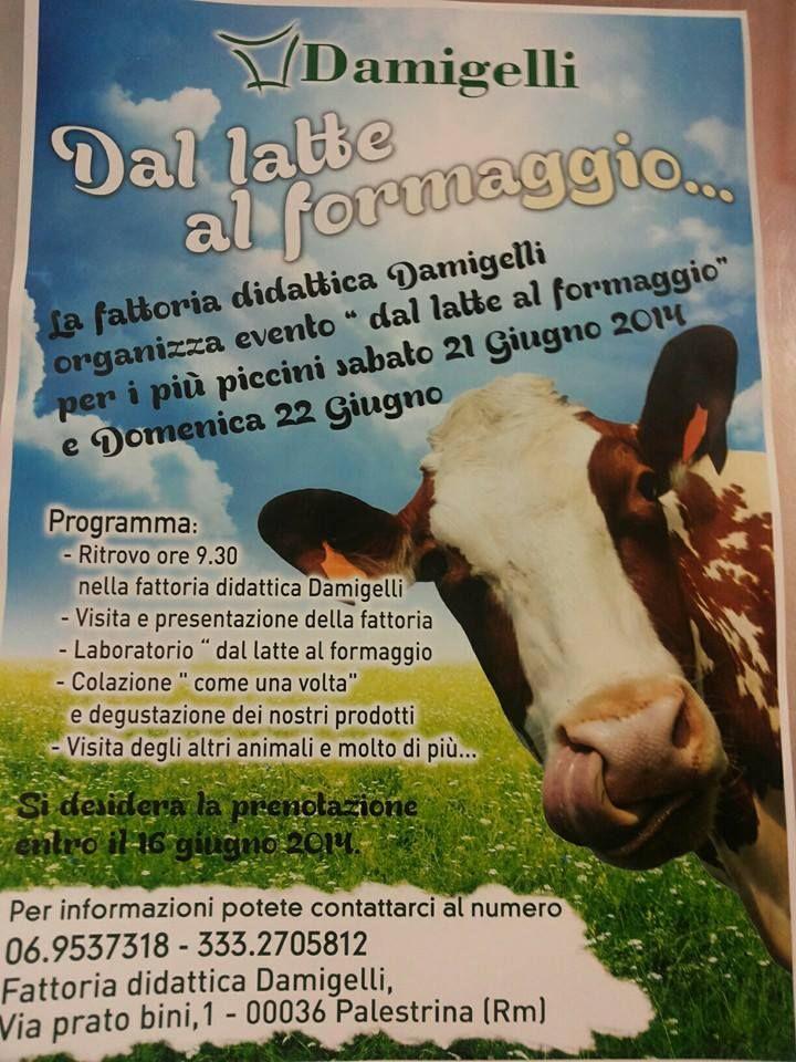 La fattoria didattica dell' Az. Agricola Franco Damigelli