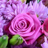 Розовый букет на День Рождения и День Валентина обязательно порадует получательницу. Заказывайте букеты розовых цветов с доставкой по России и миру.