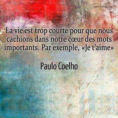 La vie est trop courte pour cacher   dans notre coeur   les mots importants.     Paulo Coelho      CITATIONS OPTION BONHEUR