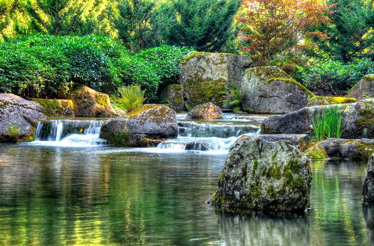Awesome japanischer garten pflanzen Google Suche Fotografie Garten Pinterest Gardens
