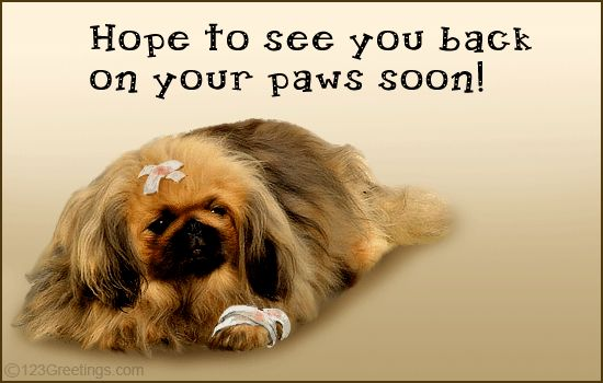 get well greetings | Get Well Soon Greetings! Free Get Well eCards, Greeting Cards | 123 ...