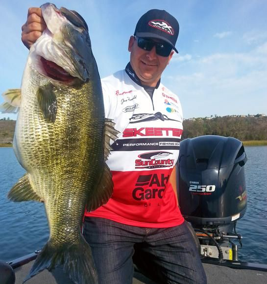25 best ideas about largemouth bass on pinterest bass for Bass fishing san diego