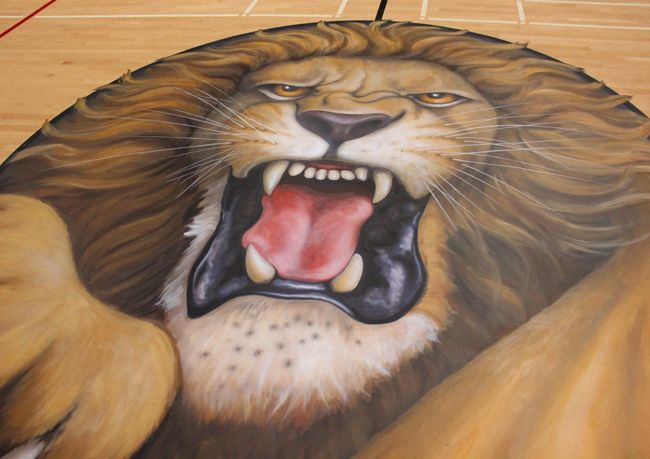 Lion painted onto Westminster High School gymnasium floor in California. Designed by Tom Seibert (Murals for Schools), painted by Dan Seese