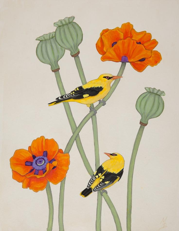 Bird Art Botanical Print Golden Oriole and Poppies by SummerHour
