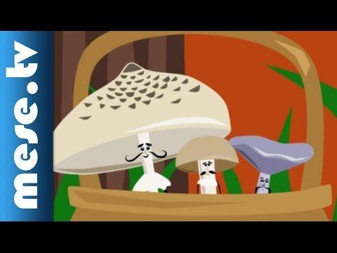 Gryllus Vilmos: Gomba-dal (gyerekdal, mese, Félnóta sorozat)
