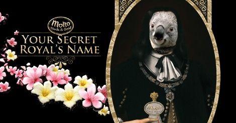 Tolong akui gelar kebangsawananku, agar aku bisa mendapatkan undangan kehormatan ke acara Molto Black and Gold: A Secret Royalty Night