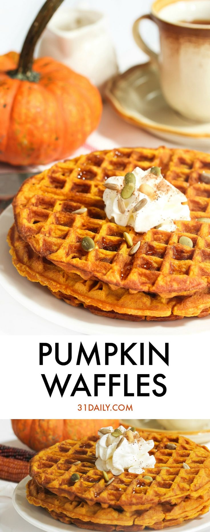 Pumpkin Waffles for Blustery Fall Mornings   31Daily.com