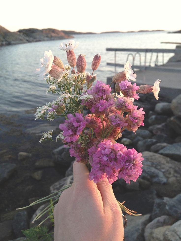 Plocka blommor på Västkusten, Smarholmen