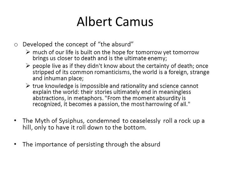 best the stranger camus ideas the stranger  absurdity in the stranger essays experts opinions