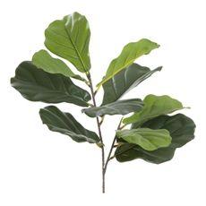 Foliage Fiddle Leaf Stem 62cm   Freedom Furniture and Homewares