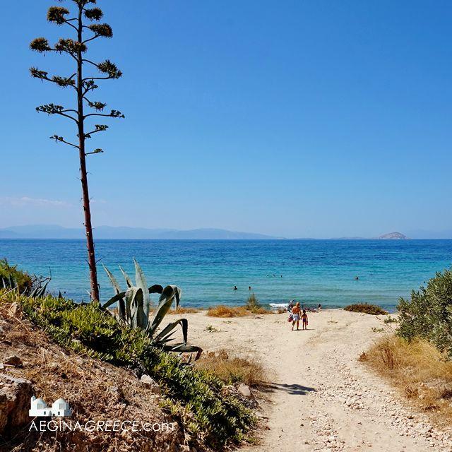 17 Best images about Aegina on Pinterest  Lapis lazuli ...