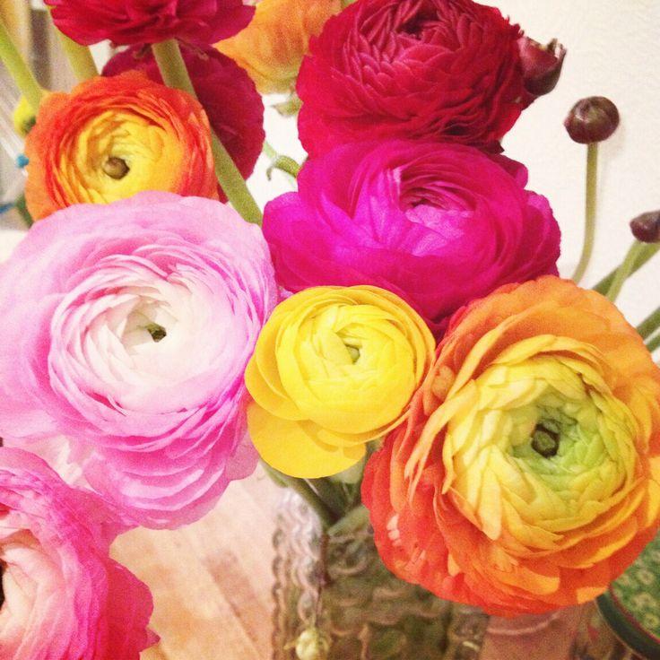 #blomster