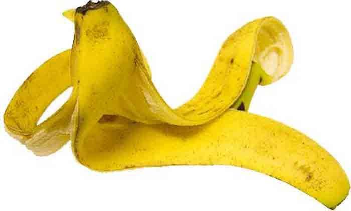 <p>Um interessante artigo, publicado pelo site Life Hacker, fala sobre as mil e uma utilidades da casca de banana. Portanto, antes de deitar fora acreditando que ela não serve para nada, confira alguns de seus usos. Alívio decoceira A casca da banana pode ser utilizada para aliviar a coceira provocada …</p>