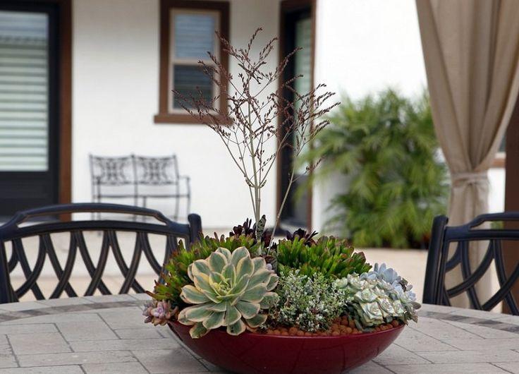 17 Best ideas about Dish Garden on Pinterest Miniature