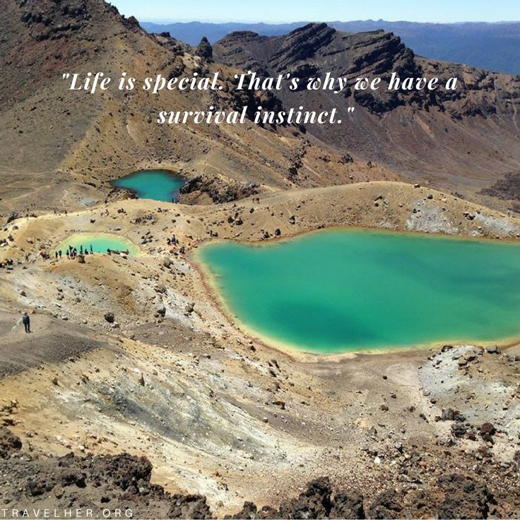 """Life is special. That's why we have a survival instinct."" #travel #quotes #inspiration #travelher Check out our travel blog and website for all females who love to travel - www.travelher.org/ Let's celebrate and encourage travel addiction together! :)"