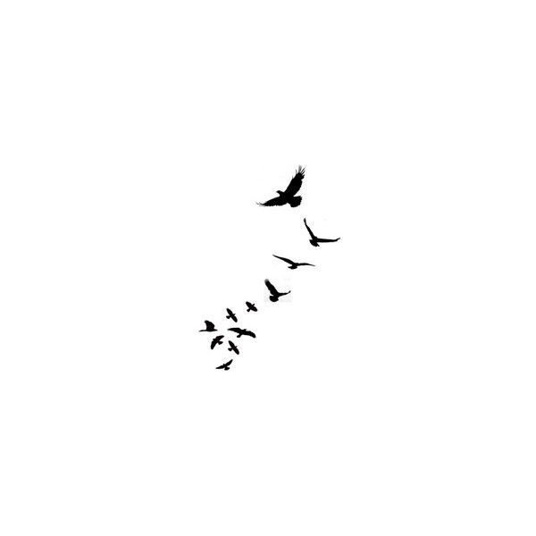 Am Loving These Little Bird Silhouette Tattoos I Don T Know If It S via Polyvore