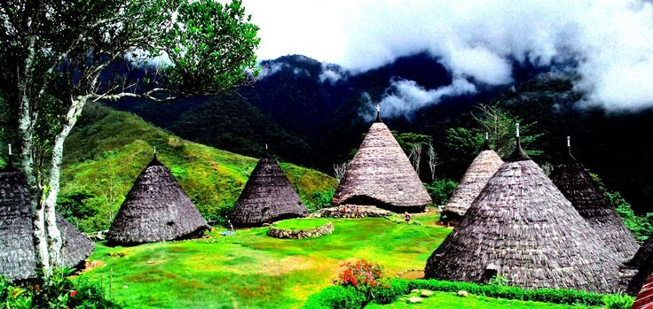 W Wae Rebo Traditional Village Wae Rebo is the famous Manggarai's traditional villages, centres around seven cone-shaped traditional houses  #waerebotraditionalvillage #waerebotours #komodowaerebotours http://www.komodoecotours.com/komodo/wae-rebo-traditional-village-3d-2n