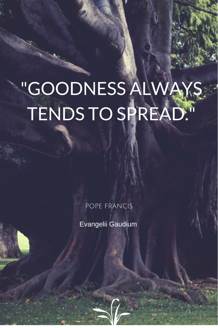 """""""Goodness always tends to spread."""" -Pope Francis  #Christianity"""