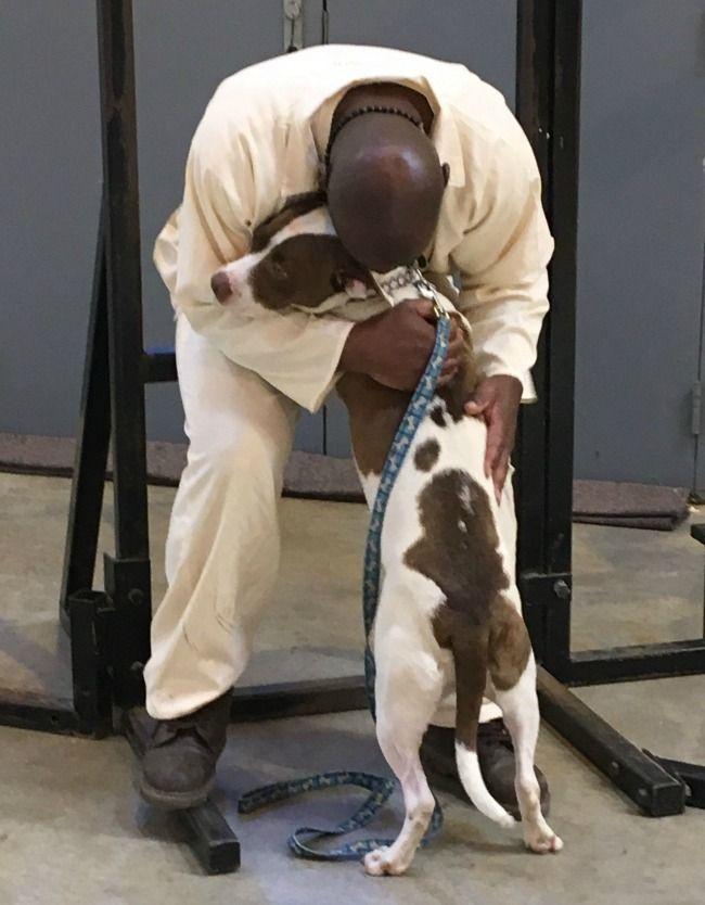 Paws In Prison Prison Arkansas