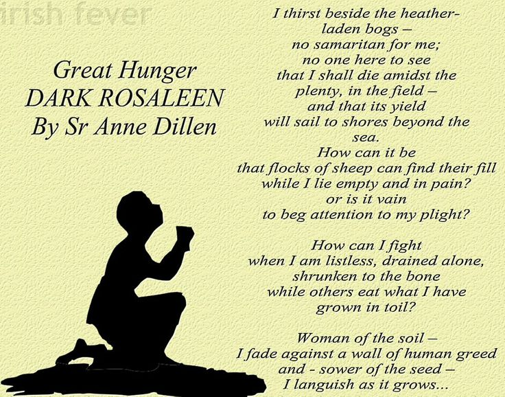 an introduction to the history of the great hunger in ireland Keywords: irish literature / irish poetry/ irish history / the great famine /   finally to conclude this introduction, i would also like to take the possibility to  thank.