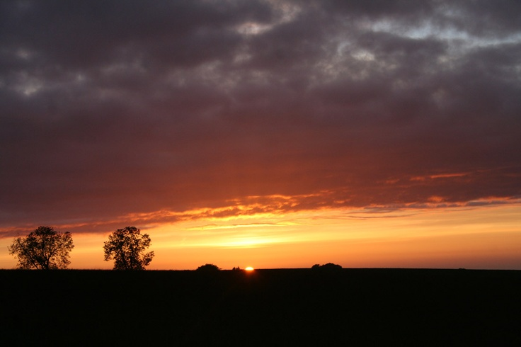 Froxfield nr Petersfield Sunset