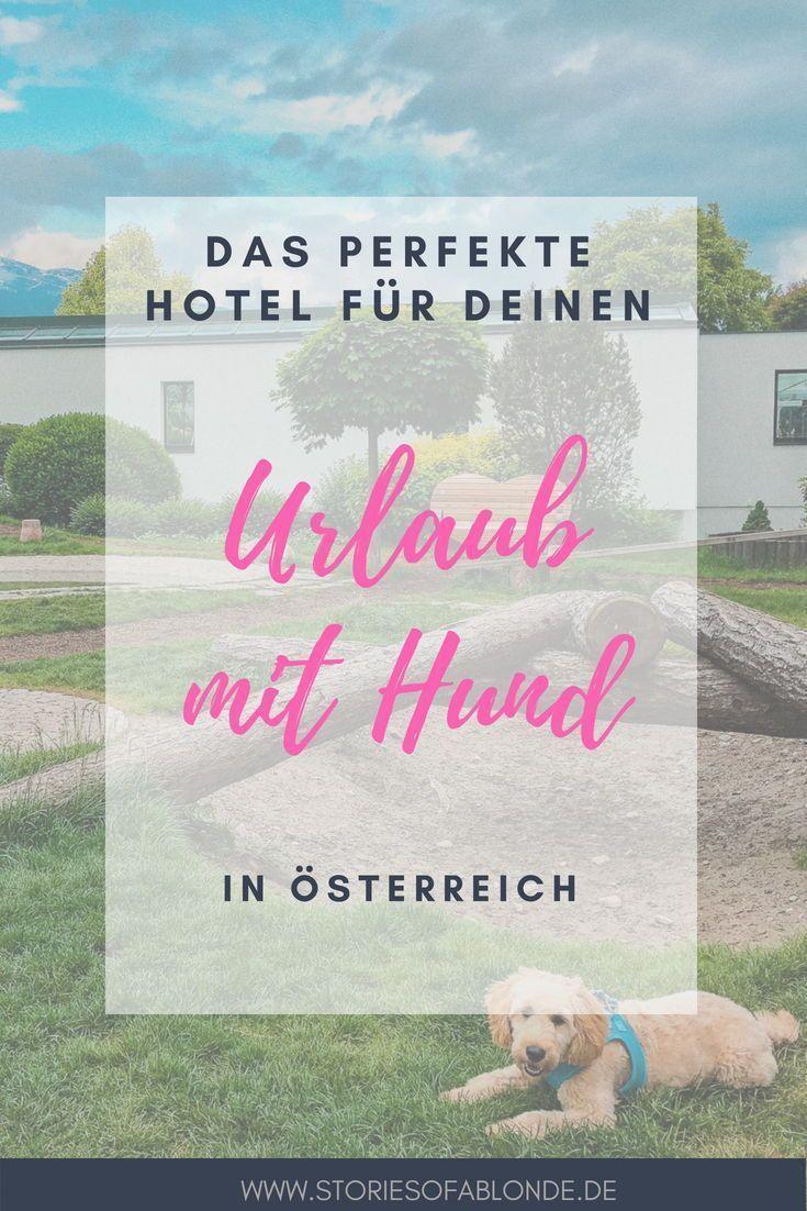 Pfötchentest: Das hundefreundliche Hotel Magdalena im ...