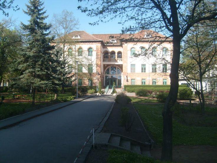 Orvostudományi Egyetem, Szeged - University of Szeged, Health Science