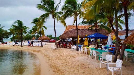 Best 25+ Key largo florida ideas on Pinterest   Key largo beach, Key largo diving and Florida ...
