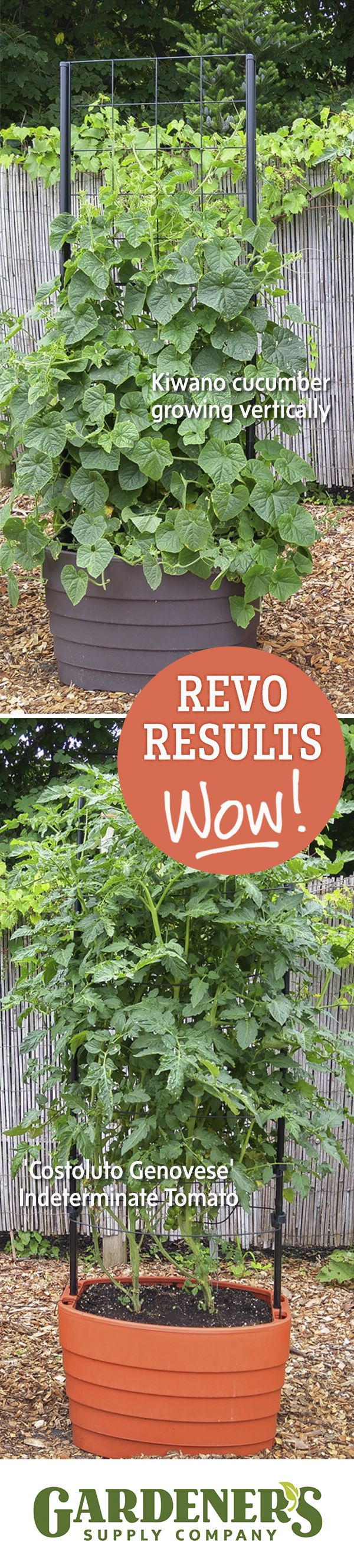 We had to show you some results from our test gardens. Our Gardener's Revolution Classic Tomato Planter and Classic Vine Planter at work!