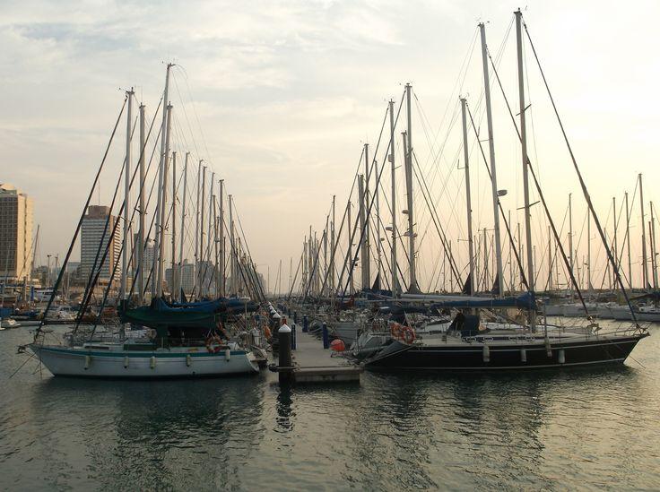 Tel Aviv Marina (מרינה תל-אביב) in תל אביב-יפו, תל אביב