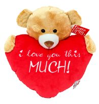 Bear Hug - I Love you this much