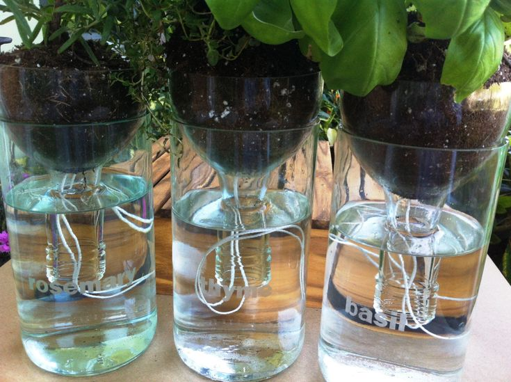 Set of Three (3) Self Watering Planters made with recycled Wine Bottles. $20.00, via Etsy.