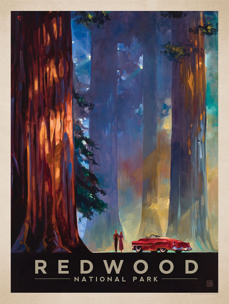 Anderson Design Group Studio, Redwood National Park, California