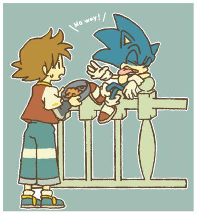 """""""Look at me I'm a hedgehog not a cat!"""""""