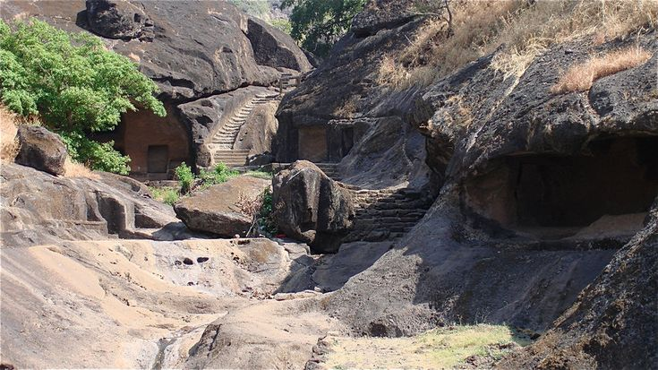 Sanjay gandhi National Park 4 India by jennystokes on deviantART